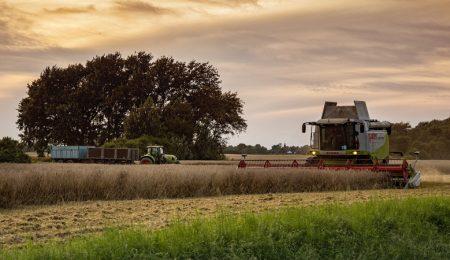 Сельское хозяйство Беларусь, 2 укос трав