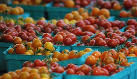 Как открыть ферму - Новости сельского хозяйства в Беларуси