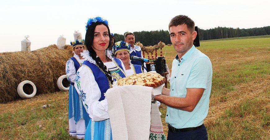 Завидовское завершило уборку зерновых - Новости сельского хозяйства РБ