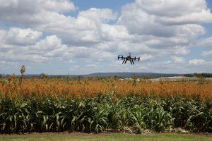 Цифровые технологии в сельском хозяйстве - Новости сельского хозяйства Беларуси