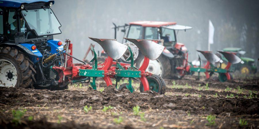 Сроки сева озимых - Новости сельского хозяйства Беларуси