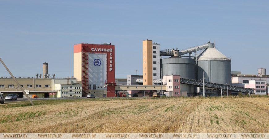 Сахарный завод в Слуцке - Новости сельского хозяйства Беларуси