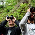 Белорусы присоединились к глобальному уик-энду наблюдений за птицами