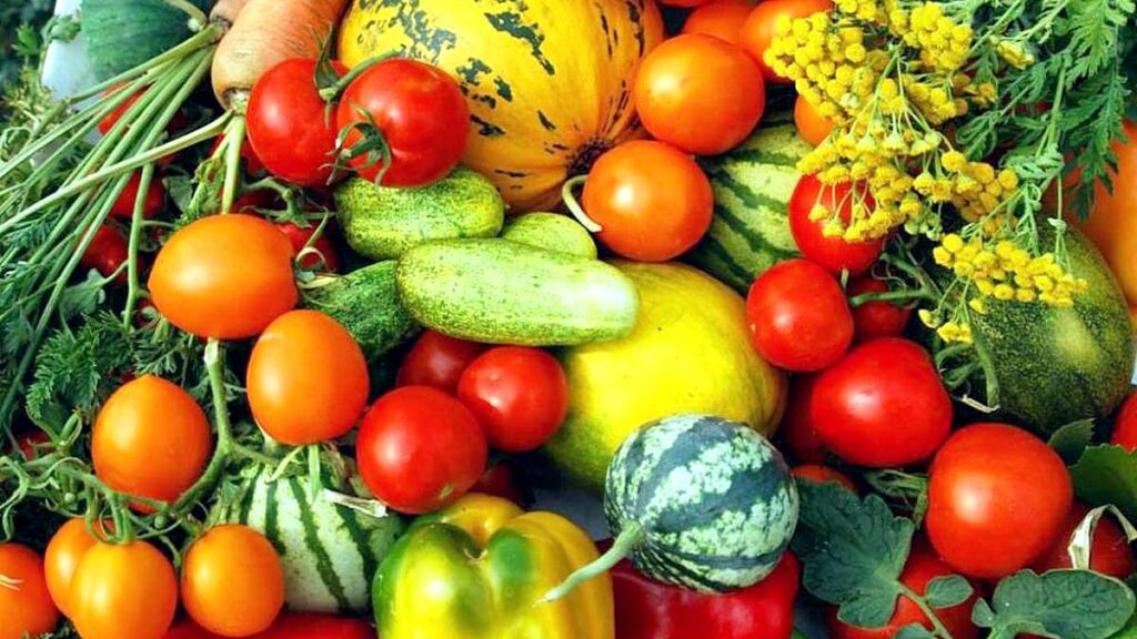 Гигантская сковорода с картофелем и дегустация. 17 октября пройдет фестиваль-ярмарка в Самохваловичах