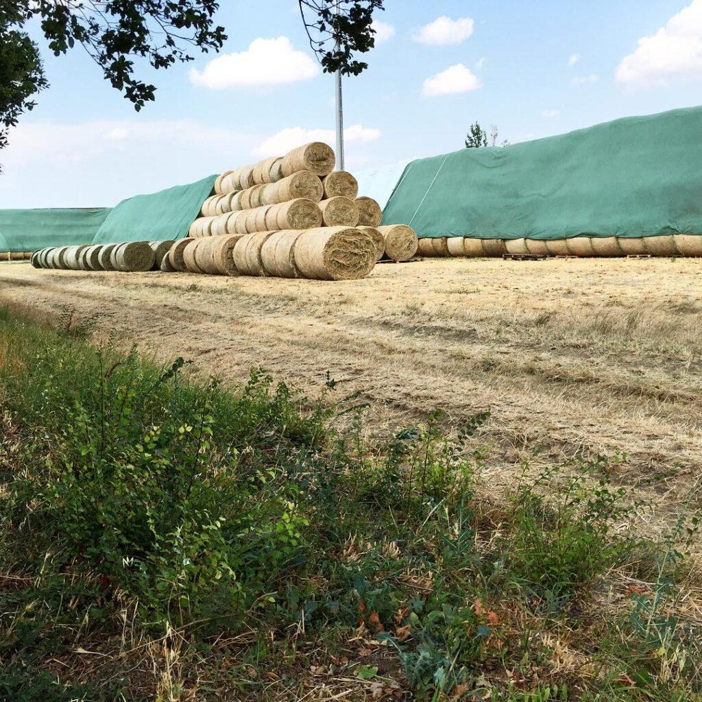Флис для укрытия соломы и сена - Новости сельского хозяйства Беларуси и Мира