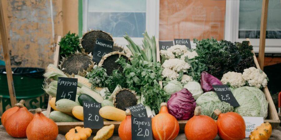Бизнес-курс для экологических хозяйств - Новости сельского хозяйства Беларуси
