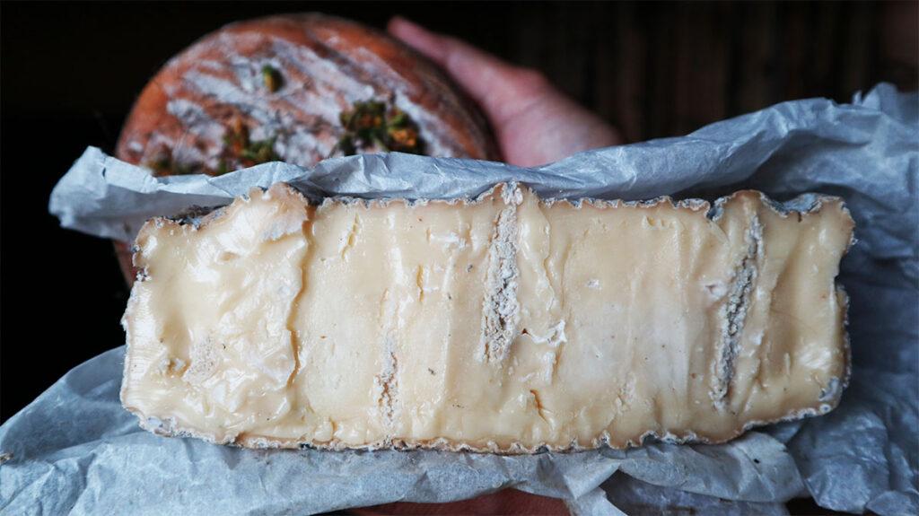 Сыр с белой плесенью ручной работы Мастеровы - Новости сельского хозяйства Беларуси