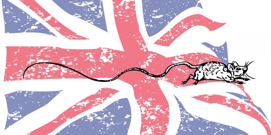 Британские исследования - Новости сельского хозяйства