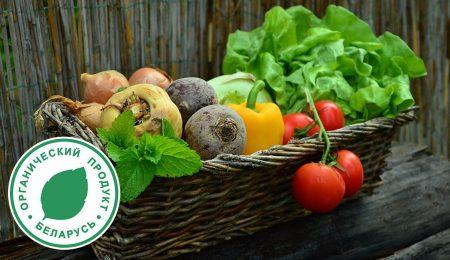 Органические продукты Беларуси - Новости сельского хозяйства