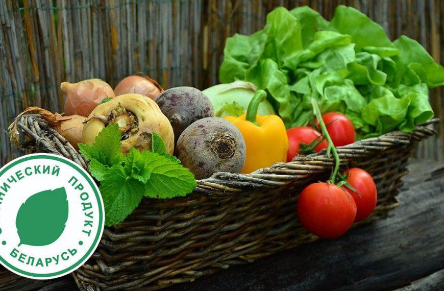 Государство возместит расходы по сертификации на производство органической продукции