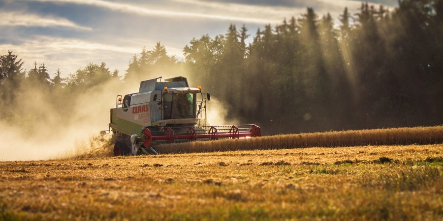 Прогноз урожая зерна на 2021 год - Новости сельского хозяйства Беларуси