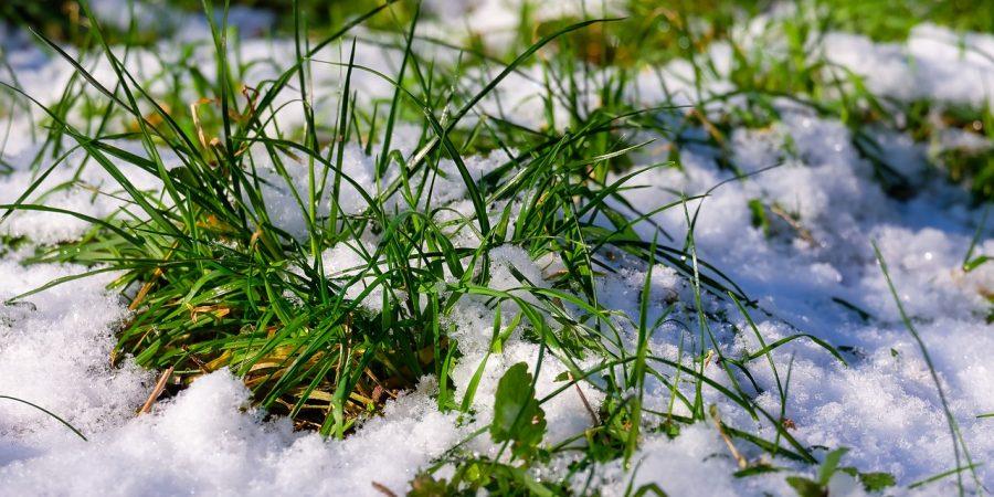 Весеннее подмерзание почвы - Посевная 2021 - Новости сельского хозяйства Беларуси