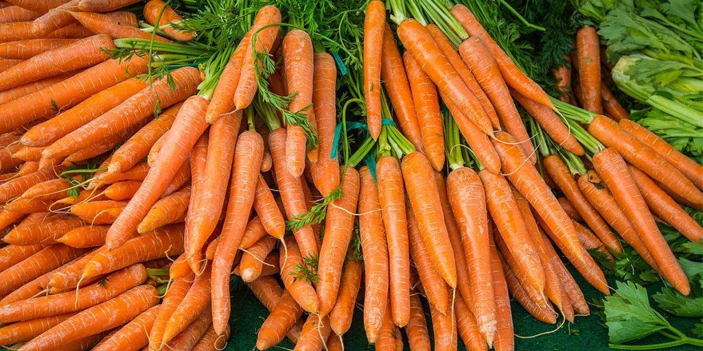В Бразилии вывели первую в мире органическую морковь
