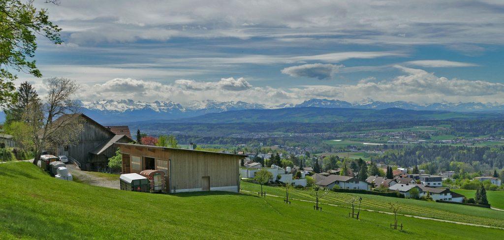 Новые рекорды по производству органических продуктов – в Швейцарии