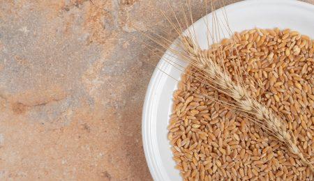 Зерно - Новости сельского хозяйства