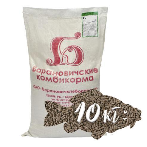 ryby-s-kg-10